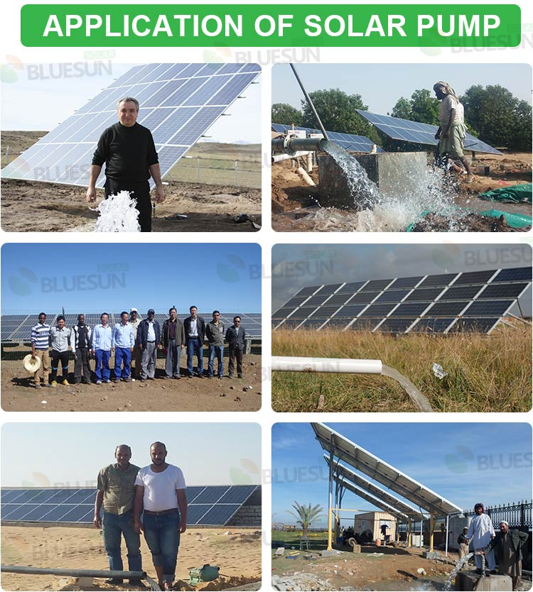 solar pump irrigation system