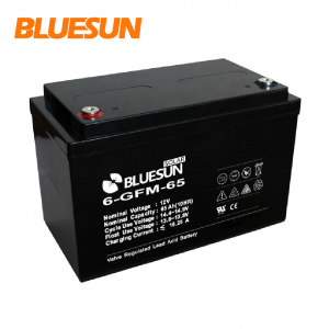 12V 65ah AGM electric cells and batteries